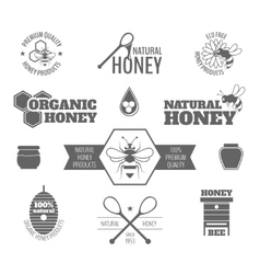 Bee honey label black vector