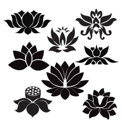 Lotus pattern flowers silhouettes vector