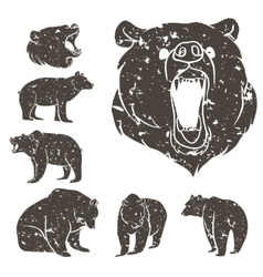 Set of different bears 2 vector