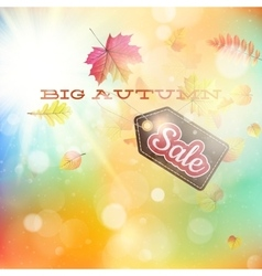 Autumn sales template EPS 10 vector image vector image
