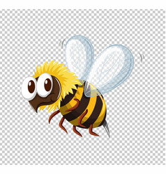 Little bee flying on transparent background vector