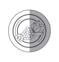 Delicious grapes fruit vector