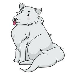 Fluffy Dog vector image