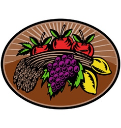 Fruit wheat harvest vector