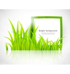 Green frame in grass vector