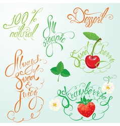 calligraphy fruits 380 vector image