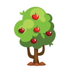 cartoon apple tree vector image vector image