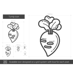 Turnip line icon vector