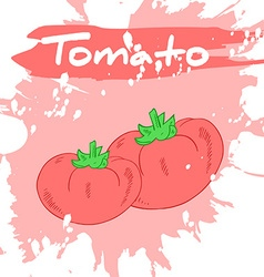 Hand drawing of vegetable with label and artistic vector