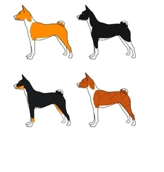 Set of dogs basenji breed  all colors vector