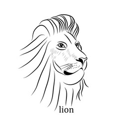 black and white tattoo lion vector image