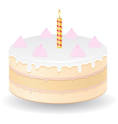 cake 05 vector image vector image