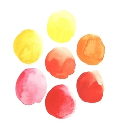 Spots of yellow orange red paints vector