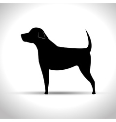 Silhouette big dog vector