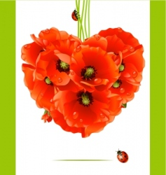 floral love card poppy heart vector image