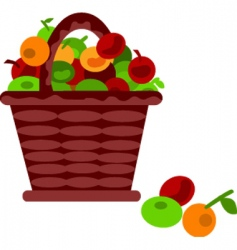 fruits in basket vector image