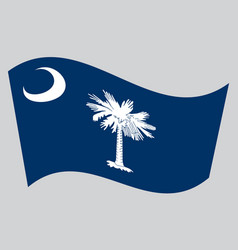 Flag of south carolina waving on gray background vector
