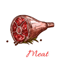 Raw fresh hind quarter meat isolated icon vector