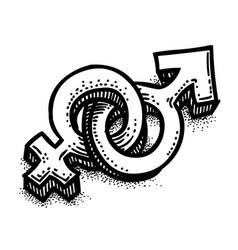 Cartoon image of male female sex symbol gender vector