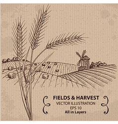 Fields with harvest and wheat vector