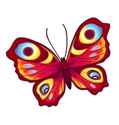 graphic butterfly vector image vector image