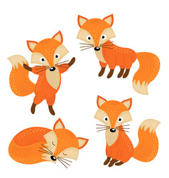 Set of isolated cute foxes part 2 vector