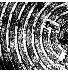 Texture Concentric vector image vector image
