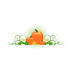 three pumpkins vector image vector image