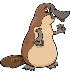 Platypus animal cartoon vector