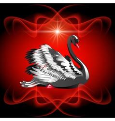 Elegant black swan vector image