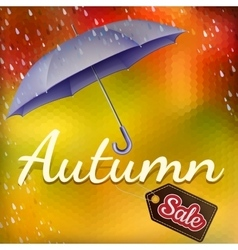 Autumn sales EPS 10 vector image vector image
