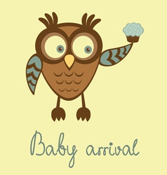 baby arrival owl vector image