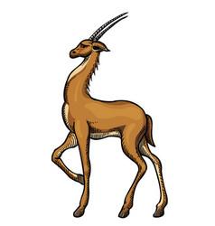 cartoon image of antelope vector image vector image