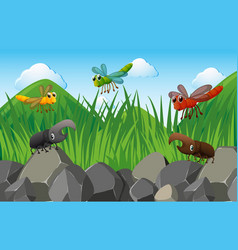 Scene with insects in the garden vector
