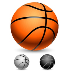 Basketball balls vector image vector image