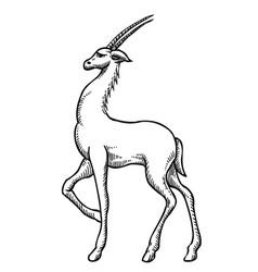 Cartoon image of antelope vector