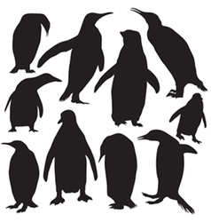 penguins silhouette vector image vector image