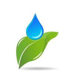 Water drop on leaf logo vector image