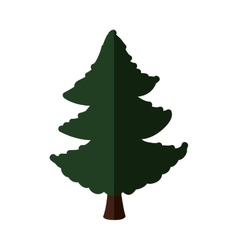 Green pine tree icon nature design vector