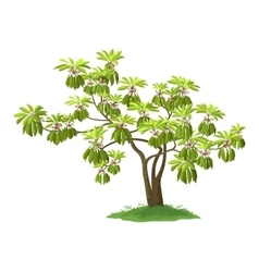 Exotic green plant vector