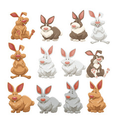 Rabbits with different fur colors vector