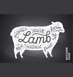 Poster with red lamb silhouette lettering vector