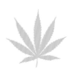 Cannabis marijuana weed vector