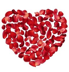 heart made petals vector image