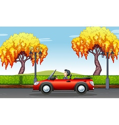 Man driving convertible car in the park vector image vector image