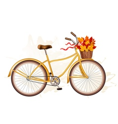 Autumn bicycle with colorful leaves vector