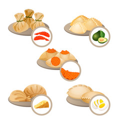 dim-sum treats in plates set wrapped dough with vector image