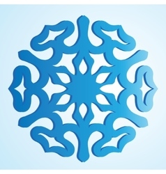 The blue isolated snowflake vector image