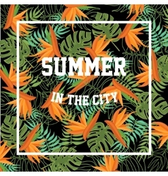 Tropical background with summer in the city vector