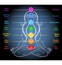 Woman yoga meditation with chakras vector image